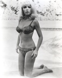 Stella Stevens Kneeling on Sand wearing Bikini in Black and White Photo by  Movie Star News