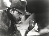Harrison Ford Stares to a Cobra Photo by  Movie Star News