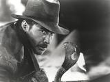 Harrison Ford Stares to a Cobra Fotografia por  Movie Star News