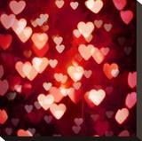 Love Is In The Air Opspændt lærredstryk af Kate Carrigan