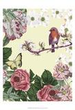 Bird Garden II Poster by Naomi McCavitt