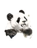 Panda Stampe di Philippe Debongnie