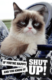Grumpy Cat - Shut Up Pôsters