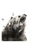 Bear Stampa di Philippe Debongnie