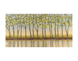 Canopy of Trees Print by Libby Smart