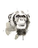 Scimpanzé Poster di Philippe Debongnie