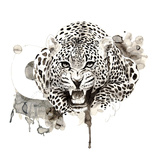 Leopardo Poster di Philippe Debongnie