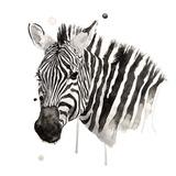 Zebra II Poster di Philippe Debongnie
