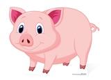 Lucky Pig - GLÜCKSSCHWEIN Figura de cartón