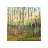Vista Trees Giclee-trykk av Libby Smart