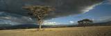Olduvai Gorge Giclee-trykk av Chris Simpson