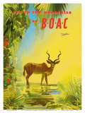 Fly to the Rhodesias (Rhodesia) - British Overseas Airways Corporation Kunst af Frank Wootton