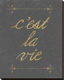 C'est La Vie Stretched Canvas Print by Lottie Fontaine
