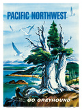 Pacific Northwest - Go Greyhound (Greyhound Bus Lines) Prints by S. Heming