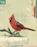 Bird IV Giclee Print by Kareem Rizk