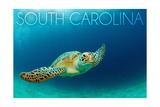 South Carolina - Sea Turtle Kunst van  Lantern Press
