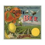 Queen Bee Brand - Corona  California - Citrus Crate Label