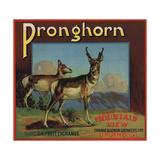 Pronghorn Brand - Upland, California - Citrus Crate Label Posters tekijänä  Lantern Press