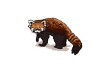 Red Panda - Icon Láminas por  Lantern Press