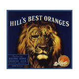 Hills Best Brand - Redlands, California - Citrus Crate Label Julisteet tekijänä  Lantern Press