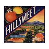 Hillsweet Brand - Porterville, California - Citrus Crate Label Posters tekijänä  Lantern Press