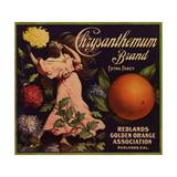 Chrysanthemum Brand - Redlands, California - Citrus Crate Label Julisteet tekijänä  Lantern Press