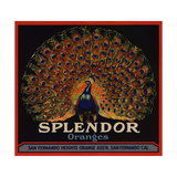 Splendor Brand - San Fernando, California - Citrus Crate Label Poster tekijänä  Lantern Press