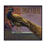 El Pavo Real Brand - Anaheim, California - Citrus Crate Label Posters tekijänä  Lantern Press