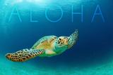 Sea Turtle Swimming - Aloha Plakater af  Lantern Press