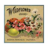 Wildflower Brand - Ruddock, California - Citrus Crate Label Julisteet tekijänä  Lantern Press