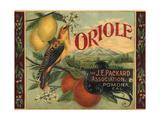 Oriole Brand - Pomona, California - Citrus Crate Label Julisteet tekijänä  Lantern Press
