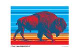 Native Buffalo - John Van Hamersveld Poster Artwork Lámina giclée prémium por  Lantern Press