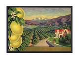 Lemons and Orchard - Citrus Crate Label