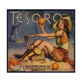 Tesoro Brand - Placentia, California - Citrus Crate Label Posters tekijänä  Lantern Press