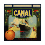 Canal Brand - Rialto, California - Citrus Crate Label Julisteet tekijänä  Lantern Press