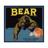 Bear Brand - Ontario, California - Citrus Crate Label Julisteet tekijänä  Lantern Press