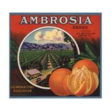 Ambrosia Brand - Upland, California - Citrus Crate Label Julisteet tekijänä  Lantern Press