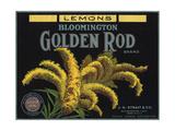 Golden Rod Brand - Bloomington  California - Citrus Crate Label