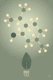 Mint - Chemical Elements Plakater af  Lantern Press