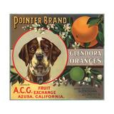 Pointer Brand - Glendora, California - Citrus Crate Label Poster von  Lantern Press