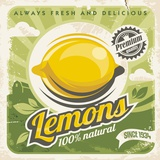 Citrons Posters par  Braun Studio