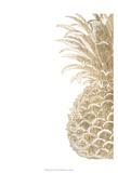 Pineapple Life IV Prints by  Studio W
