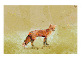 Butterfly Fox Posters par Claire Westwood