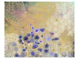 Cornflower Prints by Claire Westwood
