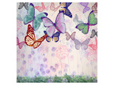 Pastels White Fly Poster par Claire Westwood