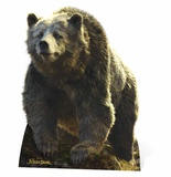 Baloo - Live Action Jungle Book Cardboard Cutouts