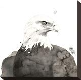 Aquila Stampa su tela di Philippe Debongnie