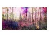 Trees 3 Affiches par Claire Westwood