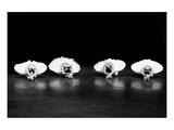 Swans reflections Pósters por Evgeniya Pirshina