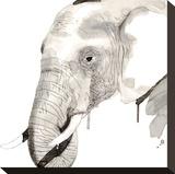 Elephant Stampa su tela di Philippe Debongnie